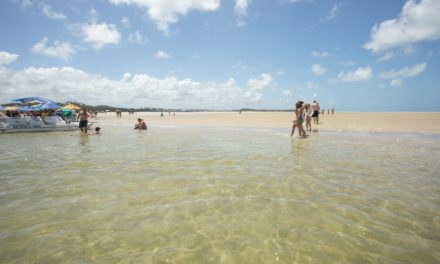 Porto de Galinhas e Carneiros: como aproveitar as piscinas naturais de águas transparentes