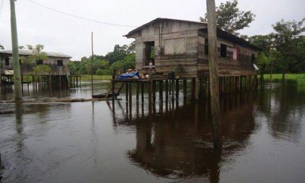 Nível do Rio Negro deve atingir média de 28,3 metros em 2020, diz CPRM