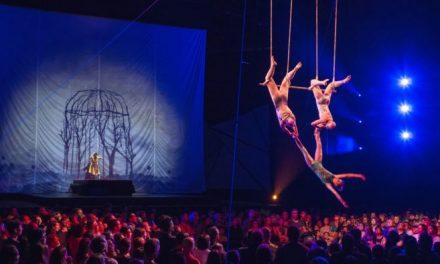 Uma viagem virtual ao Cirque du Soleil