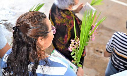 Fiéis de Bragança celebrarão o Domingo de Ramos em casa