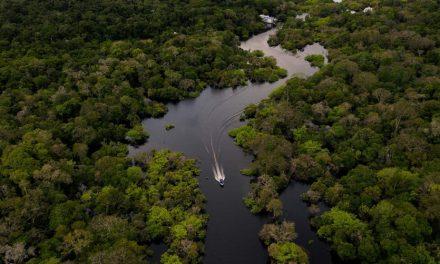 Amazônia já tem quase 50 mil contaminados e mais de 3 mil mortos pelo novo coronavírus