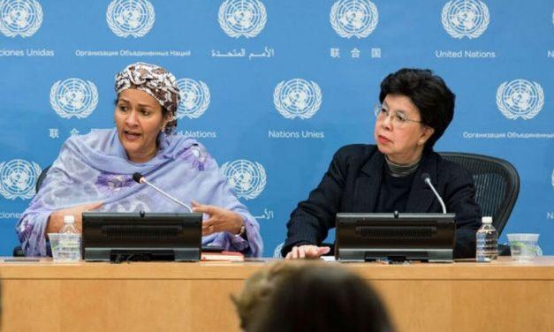 ONU convoca reunião para fortalecer apoio a países em desenvolvimento