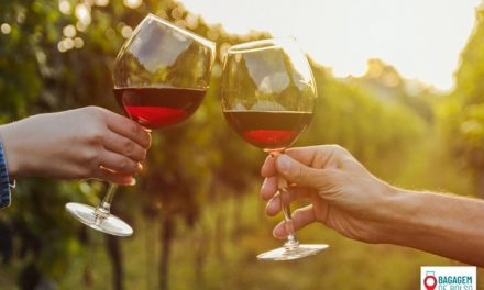 Duas vinícolas para conhecer no Valle de Casablanca, no Chile
