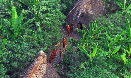 No AM, etnia Kanamari registra primeiros casos de Covid-19 entre indígenas