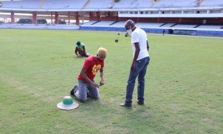 Fechado para jogos, Mangueirão vira palco de capacitação em jardinagem e gramado