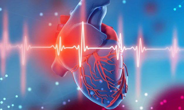 Pará teve aumento de 34% de mortes por doenças cardíacas durante pandemia