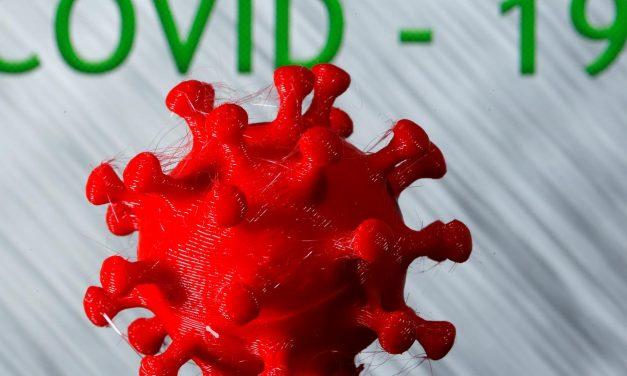 Cientistas avaliam como células do sistema imunológico combatem Covid-19