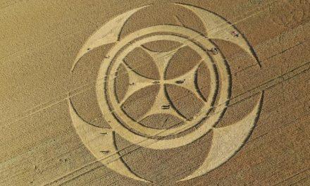 Símbolo misterioso em campo de trigo atrai curiosos na França