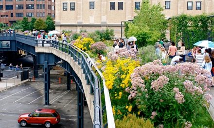 Parque suspenso de NY reabre após queda nos números da Covid na cidade