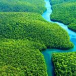 Ministério do Meio Ambiente quer reduzir meta oficial de preservação da Amazônia