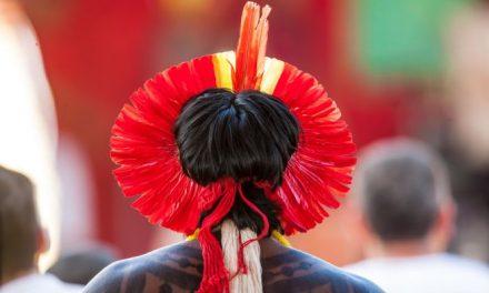 Sespa destaca avanços na política de saúde dos povos indígenas
