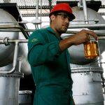 Exportação de soja compromete produção de biodiesel para mistura em combustível