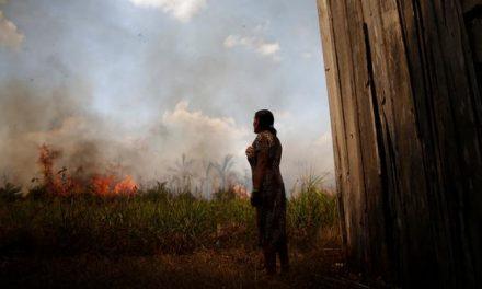 Pesquisadores avaliam 'catástrofe' na Amazônia com covid-19 e queimadas