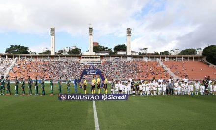 Palmeiras e Santos se enfrentam com novas esperanças; veja o que mudou desde último clássico