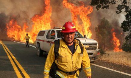Incêndios florestais na Califórnia destroem área mais de 400 mil hectares
