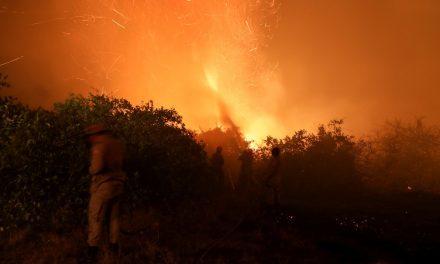 Pantanal tem segundo maior número de queimadas para agosto desde início das medições