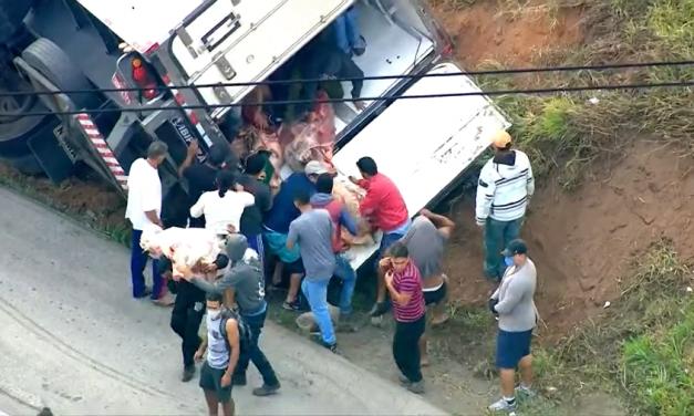 Caminhão com carne tomba na Régis Bittencourt e tem carga saqueada