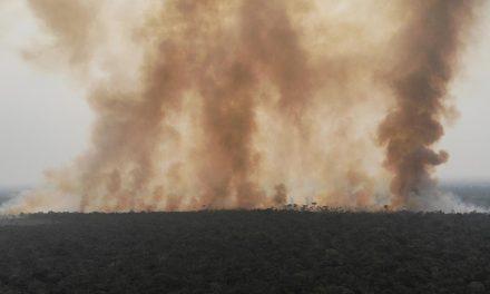 Fumaça de queimadas na Amazônia e Pantanal chegam ao sul e sudeste