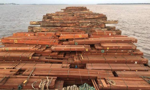 Operação Netuno apreende madeira e amplia comunicação entre as bases no Marajó
