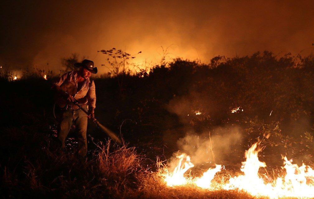 Multas do Ibama despencam apesar de recorde de queimadas no Pantanal