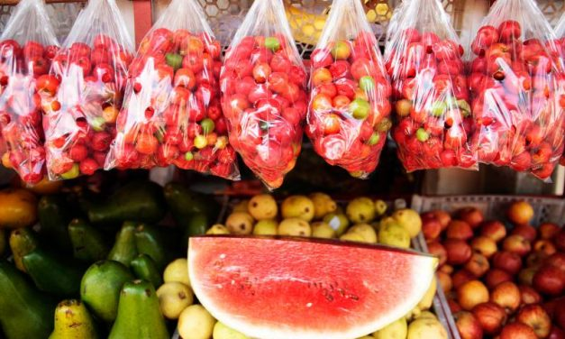 Frutas e legumes da estação fortalecem a imunidade