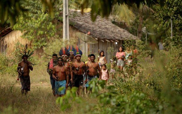 Indígenas mantêm isolamento por 6 meses e não registram casos de Covid-19 em aldeia no Pará