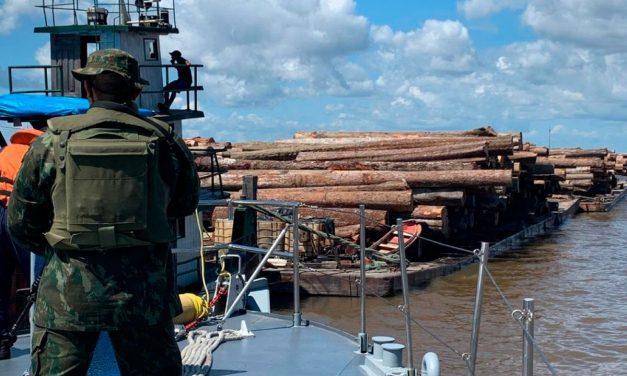 Carga ilegal de madeira apreendida pela Marinha do Brasil é avaliada em R$ 200 mil