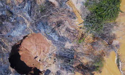 """PF faz operação contra garimpo na Amazônia e diz que sistema de satélite contratado é """"fundamental"""""""