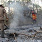 Chuva e força-tarefa ajudam a reduzir focos de incêndio no Pantanal; situação ainda é de alerta