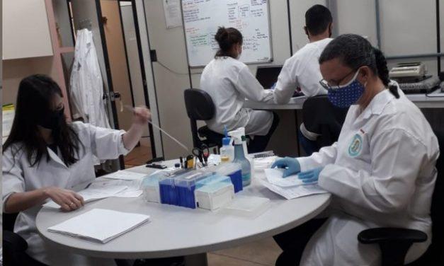 Laboratório em Goiás deve analisar sementes 'misteriosas' recebidas após compras pela internet