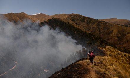 Incêndio florestal volta a ganhar força perto de parque arqueológico de Cusco