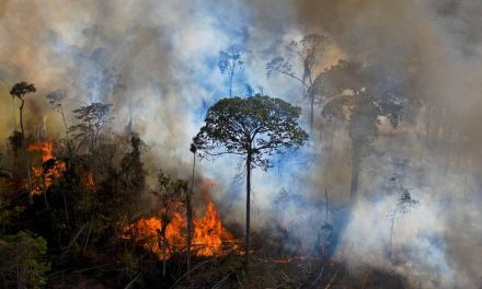 Chefe do centro de combate a incêndios do Ibama deixa cargo um mês depois de nomeado