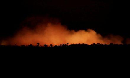 Pantanal e Amazônia registram recorde de queimadas em outubro