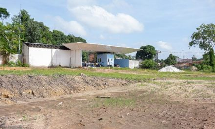 Paysandu mobiliza a torcida para finalizar as obras de dois campos no centro de treinamento