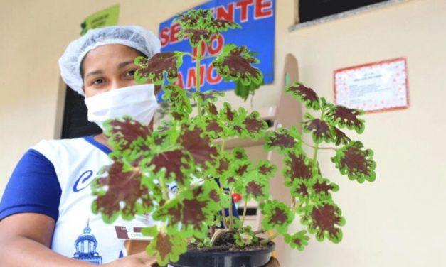 Hospital de Barcarena cria projeto de acolhimento para mães de bebês prematuros