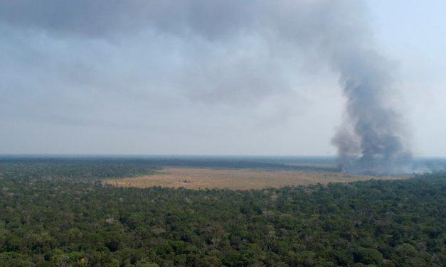 Governo Federal planeja nova estrada no meio da Amazônia