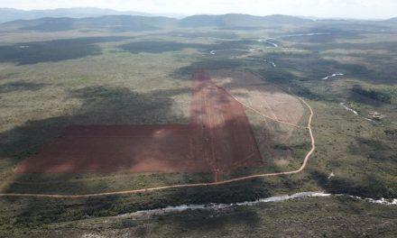 Área na Chapada Diamantina é desmatada com licença irregular e preocupa agricultores familiares