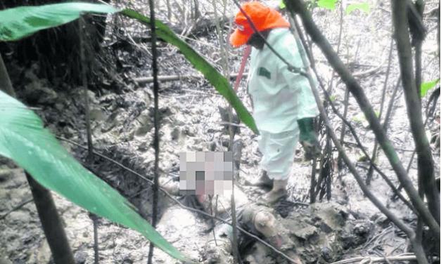 Corpo de mulher é encontrado em cova rasa em Marituba