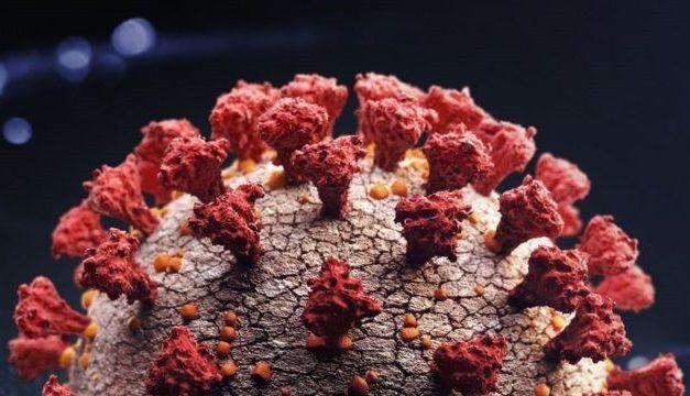 EUA detectam primeiro caso da nova variante do coronavírus