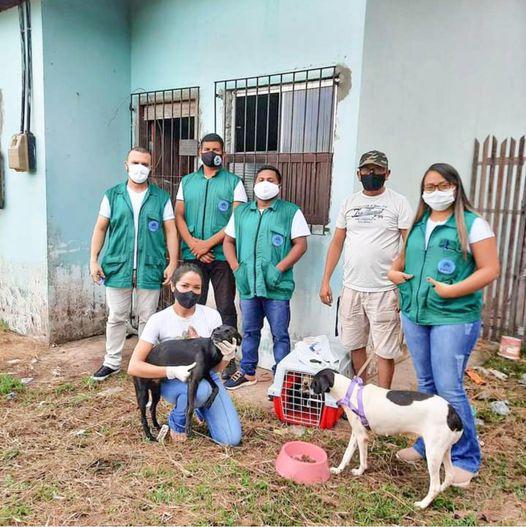 Ação resgata animais em situação de maus tratos