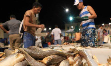 Decreto para controle do pescado na Semana Santa começa a valer nesta terça-feira