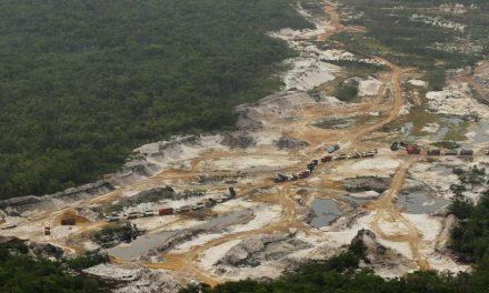 Ação destinada a combater desmatamento gasta 0,7% da verba