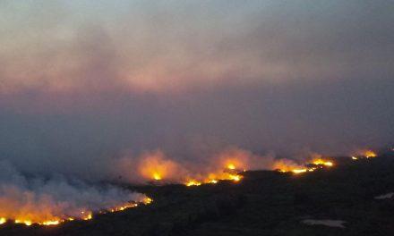 Governo do MS decreta emergência e pede ajuda por incêndios no Pantanal