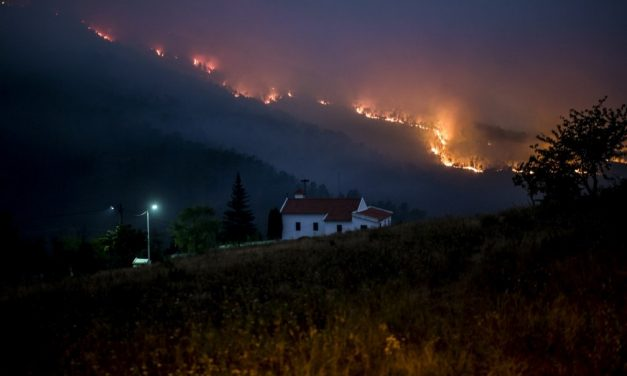 Portugal controla incêndio florestal, mas bombeiros mantêm alerta