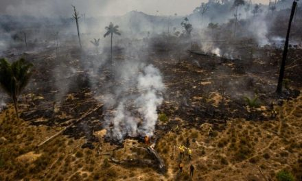 Itamaraty reduz importância de área ambiental na diplomacia do Brasil