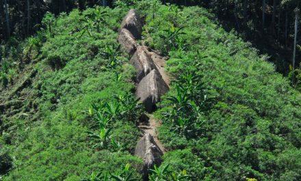 Demarcação de terras indígenas reduziu o desmatamento na Amazônia, diz estudo