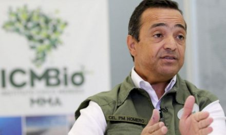 Salles demite presidente do ICMBio por divergências sobre incêndios no Pantanal