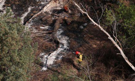 Argentina sofre piores incêndios em área de pântano em mais de uma década