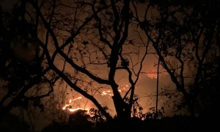 Incêndios em Chapada dos Guimarães (MT) destroem mais de 6 mil hectares de vegetação