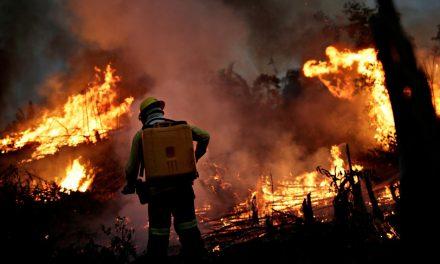 Incêndios na Amazônia se agravam em setembro e ameaçam florestas intocadas